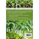 Здоровая рассада для сверхурожая — фото, картинка — 5