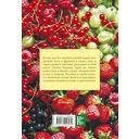 Энциклопедия садовода и цветовода для новичков в понятных рисунках и схемах — фото, картинка — 15