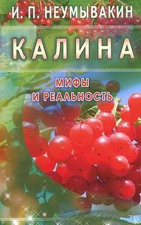 Калина. Мифы и реальность. Иван Неумывакин