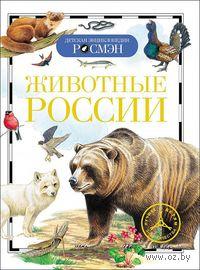 Животные России. Ирина Травина