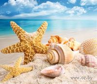 """Алмазная вышивка-мозаика """"Морские сокровища"""""""
