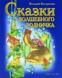 Сказки волшебного родничка. Валерий Кастрючин