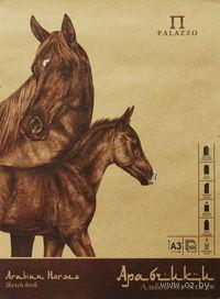 """Альбом для эскизов """"Арабчики"""" на картоне (50 листов, А-3)"""