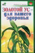 Золотой ус - для вашего здоровья. Степан Евдокимов