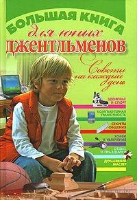 Большая книга для юных джентльменов. Юлия Виес