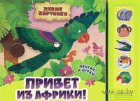 Привет из Африки! Книжка-игрушка. Екатерина Жукова