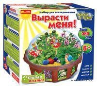 """Набор для выращивания растений """"Твой эко-сад. Чайная поляна"""""""