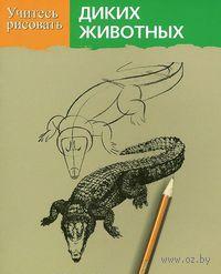 Учитесь рисовать диких животных