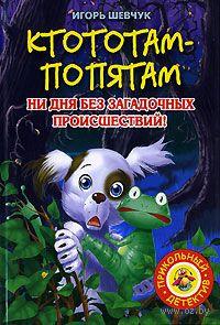 Ктототам-Попятам. Игорь Шевчук