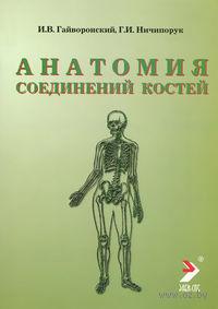 Анатомия соединений костей. Иван Гайворонский, Геннадий Ничипорук