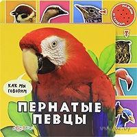 Пернатые певцы. Книжка-игрушка. Валерия Зубкова