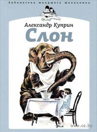 Слон. Александр Куприн, Давид Боровск