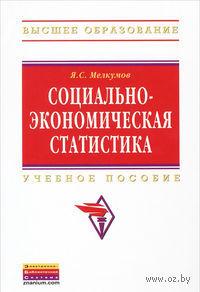 Социально-экономическая статистика. Ян Мелкумов