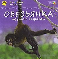 Обезьянка изучает джунгли. Майкл Тейтелбаум