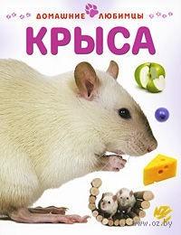 Крыса. Мэтью Рейнер