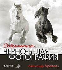 Современная черно-белая фотография. Александр Ефремов