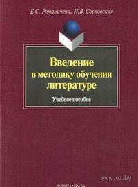Введение в методику обучения литературе. Елена Романичева, Ирина Сосновская