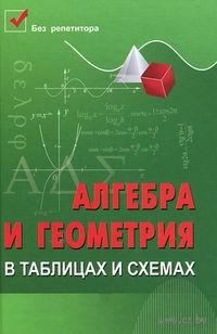 Алгебра и геометрия в таблицах и схемах. Светлана Райбул