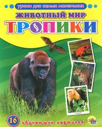 Животный мир. Тропики. 16 обучающих карточек