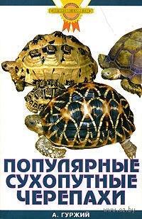 Популярные сухопутные черепахи. Александр Гуржий