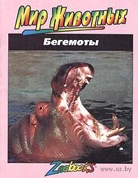 Бегемоты. Бет Брюст