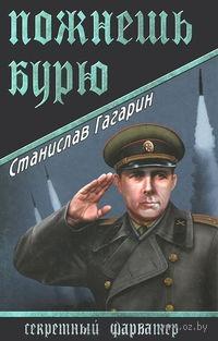 Пожнешь бурю. Станислав Гагарин