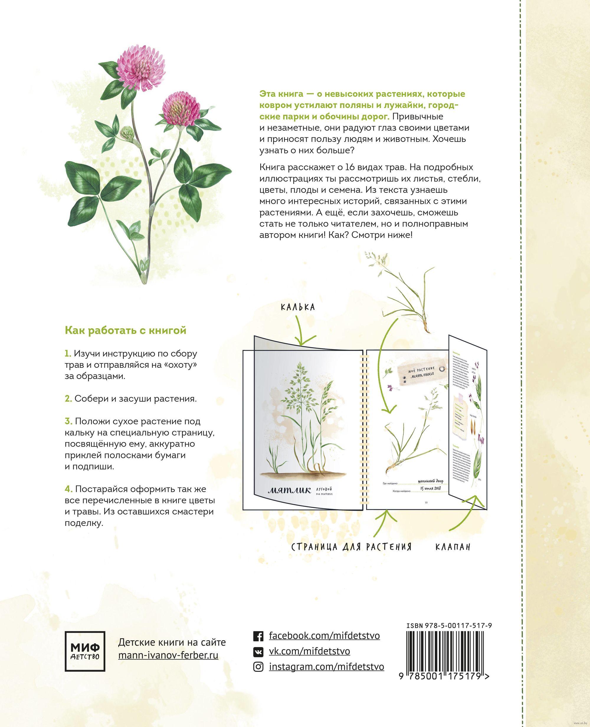 Мой гербарий. Цветы и травы» Анна Васильева, С. Винникова - купить ... 3c6f2c878ac