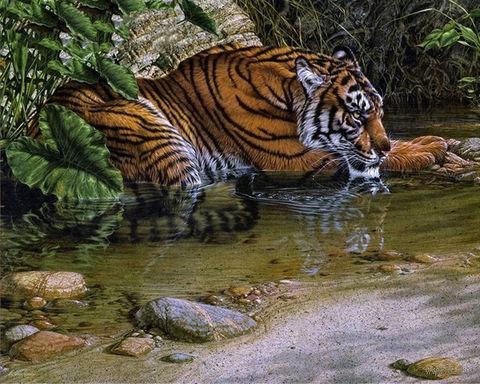 """Алмазная вышивка-мозаика """"В тени джунглей"""" — фото, картинка"""