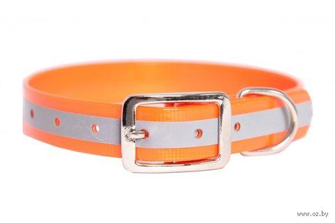 Ошейник со светоотражающими элементами (20-24 см; оранжевый) — фото, картинка