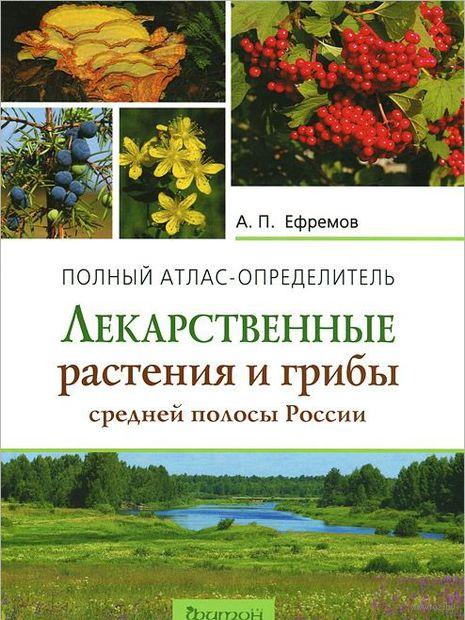 Лекарственные растения и грибы средней полосы России. Полный атлас-определитель. А. Ефремов