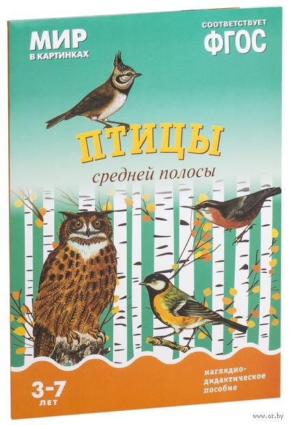Птицы средней полосы. Наглядно-дидактическое пособие. Для детей 3-7 лет. Т. Минишева