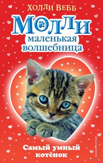 Самый умный котёнок — фото, картинка