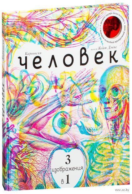 Человек 3 в 1 (с трехцветным визиром) — фото, картинка