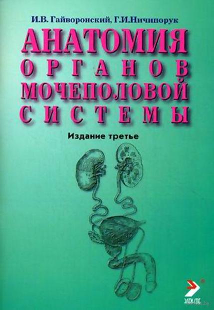 Анатомия органов мочеполовой системы. Иван Гайворонский, Геннадий Ничипорук