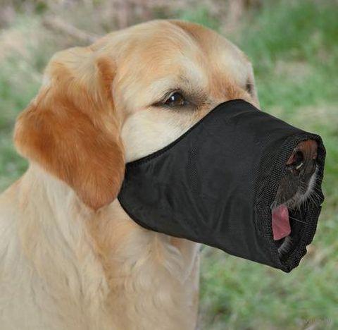 Намордник для собак нейлоновый регулируемый (размер M; 24 см/16-40 см)