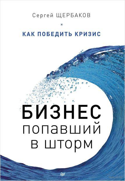 Бизнес, попавший в шторм. Как победить кризис. Сергей Щербаков