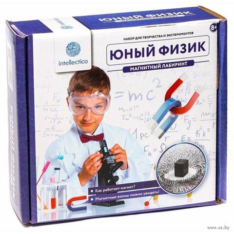 """Набор для опытов """"Магнитный лабиринт"""" — фото, картинка"""