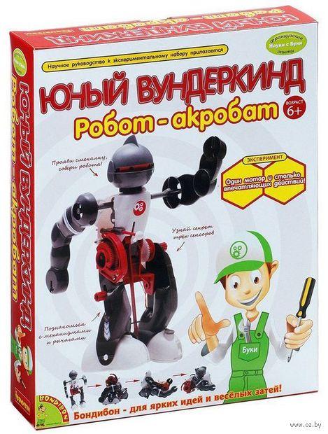 """Набор для опытов """"Науки с Буки. Робот-акробат"""""""