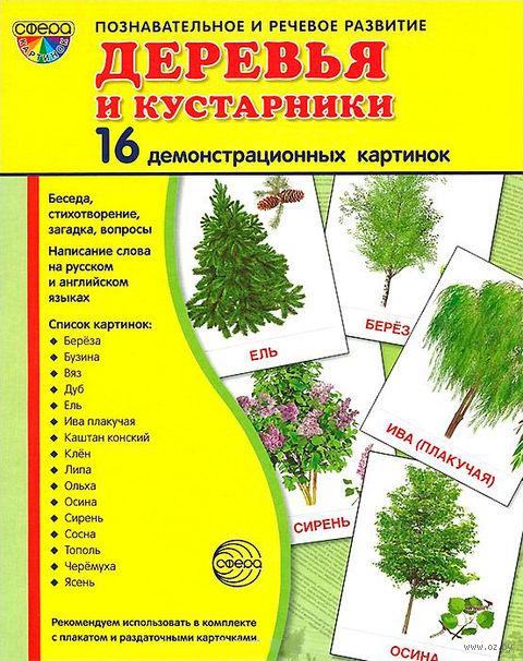 Деревья и кустарники (набор из 16 демонстрационных картинок). Татьяна Шорыгина, Татьяна Цветкова