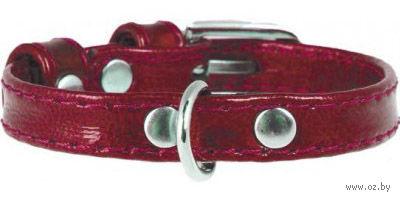 Ошейник из натуральной кожи (21-29 см; красный) — фото, картинка