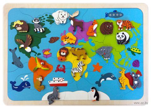 """Рамка-вкладыш """"Карта мира"""" — фото, картинка"""