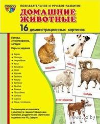 Домашние животные (16 демонстрационных картинок) — фото, картинка