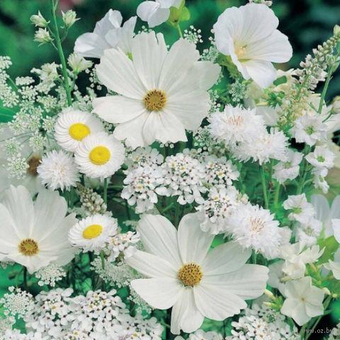 """Алмазная вышивка-мозаика """"Белые полевые цветы"""" (500х500 мм) — фото, картинка"""