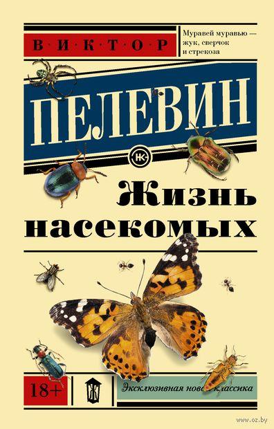 Жизнь насекомых (м) — фото, картинка