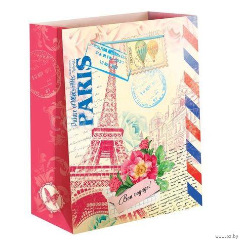 """Пакет бумажный подарочный """"Париж"""" (11х14х5 см; арт. 10733084)"""