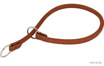 Ошейник-удавка из натуральной кожи рывковый (25 см; коричневый) — фото, картинка
