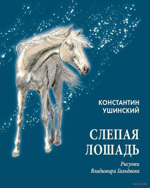 Слепая лошадь — фото, картинка