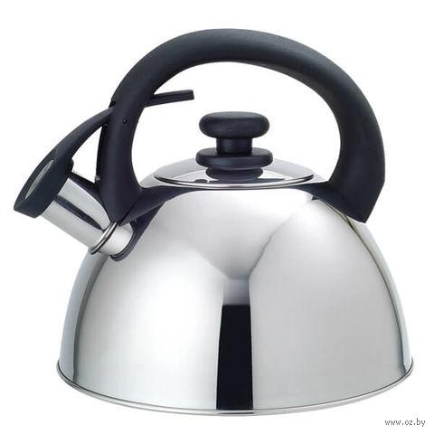Чайник металлический со свистком (2,5 л; арт. Mr-1302) — фото, картинка