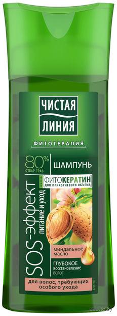 """Шампунь для волос """"Питание и уход"""" (250 мл) — фото, картинка"""