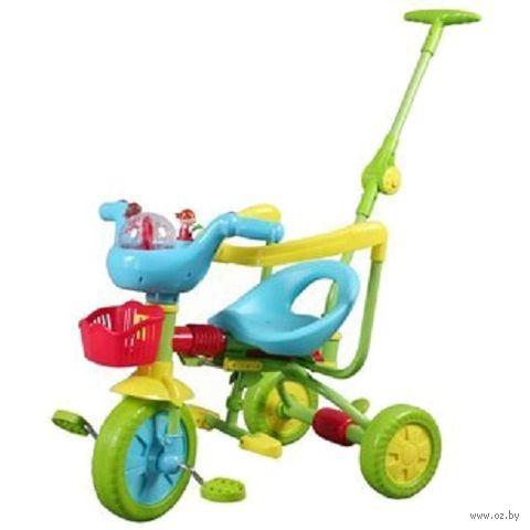 Велосипед-каталка (арт. TS3310) — фото, картинка